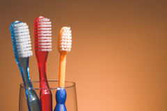 A Family's Toothbrushes Royalty Free Stock Photos
