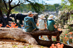 Family safari. Family of father and kids on African safari vacation enjoying wildlife viewing at watering hole Stock Photography