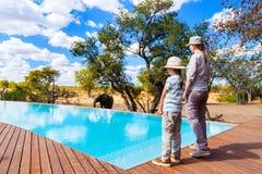 Family safari Royalty Free Stock Photography