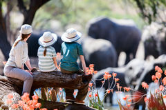 Family safari stock photography