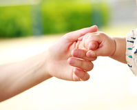 Family scene , closeup parent and baby holding hand Royalty Free Stock Image