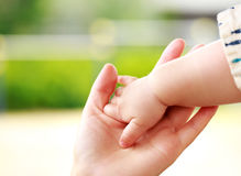 Family scene , closeup parent and baby holding hand Stock Photo