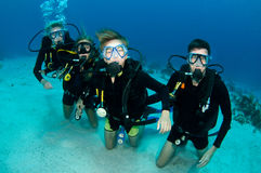 Family of scuba divers. Family of divers underwater in the red sea stock image