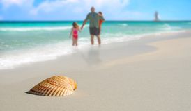Family by Seashell on Tropical Beach. Family in surf by Pretty seashell on beach with sailboat in distance Stock Image
