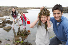 Family with seaweed Royalty Free Stock Photo