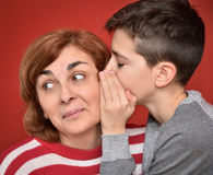 Family secret. Young boy whispering secret into ears of smiling mother Royalty Free Stock Photos