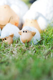 Family sheep doll on the meadow Royalty Free Stock Image