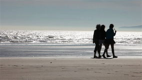 Family silhouette on the beach stock video footage