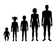 Free Family Silhouette. Man And Woman Royalty Free Stock Photos - 158345788