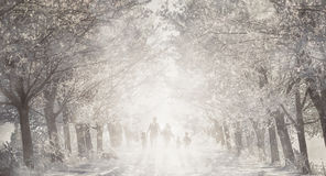 Family silhouette on the road in tree alley, winter background.  stock photography