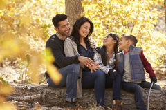 Family sitting on fallen tree in a forest look at each other royalty free stock images