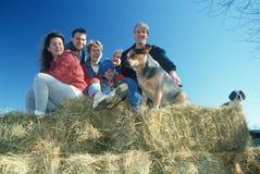 A family sitting on hay bales, Bourbon,MO Stock Photo