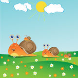 Family of Snails Royalty Free Stock Images