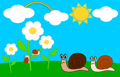 Family of snails in the meadow on a sunny day Stock Images