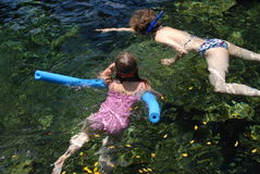 Family snorkeling. In the ocean tide pool Stock Photo
