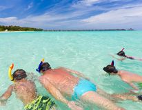 Family snorkeling in sea Stock Images
