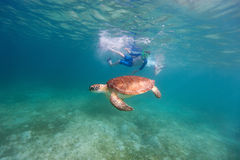 Family snorkeling with sea turtle Stock Image
