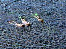 Family snorkeling together. A family of three on holiday enjoy snorkeling together at Honolua Bay in West Maui, Hawaii Royalty Free Stock Photo