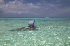 Family snorkeling, Turks & Caicos Stock Photo