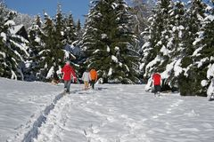 Family in snow. Family walking in the snow Stock Photo