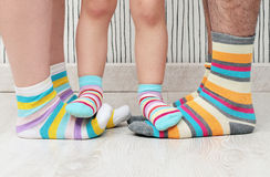 Family in socks Stock Images