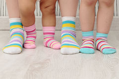 Family in socks Royalty Free Stock Photography