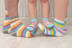 Family in socks Stock Images