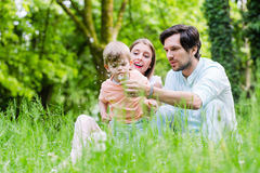 Family with son on meadow blowing dandelion seed Stock Photos