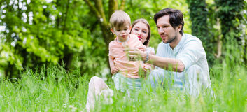 Family with son on meadow blowing dandelion seed Royalty Free Stock Image
