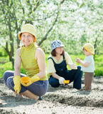Family sows seeds in soil Royalty Free Stock Images