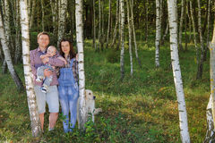 Family spending time in the birch grove in the summer. Young happy family: father, mother and their son having fun together outdoor in the birch grove. Pretty Royalty Free Stock Images