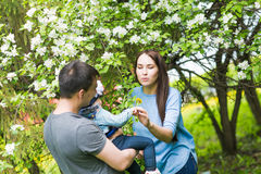 Family spending time together in the park in spring time. Mother, toddler and father playing in blooming garden. Royalty Free Stock Photos