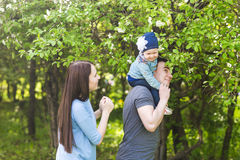 Family spending time together in the park in spring time. Mother, toddler and father playing in blooming garden. Royalty Free Stock Image