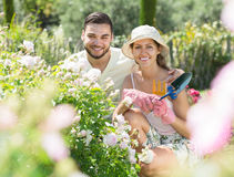 Family spends their summer vacation in the country Royalty Free Stock Photo