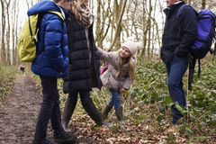 Family stand in a wood their young girl playing, crop shot Royalty Free Stock Images