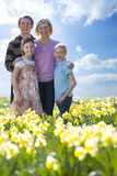 Family standing in field of daffodils Royalty Free Stock Photography