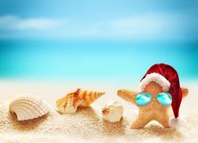 Family of starfish on summer beach and Santa hat. Merry Christmas royalty free stock photo