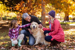 Family stroking dog while crouching at park Royalty Free Stock Photo