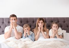 Family suffering from cold in bed. At home royalty free stock photography