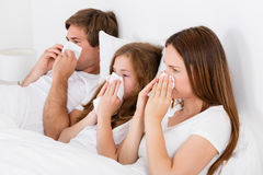 Family Suffering From Cold Stock Image