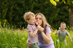 Family summer - blowing dandelion seeds Stock Images