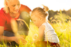Family summer - blowing dandelion seeds stock photo
