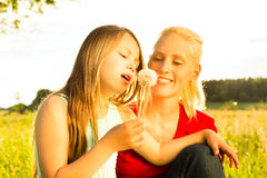 Family summer - blowing dandelion seeds Stock Photography
