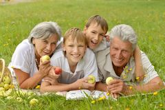 Family on  summer grass with apples Stock Image