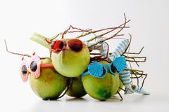 Family Summer and holiday symbolic concept.group of coconuts wit Royalty Free Stock Photography