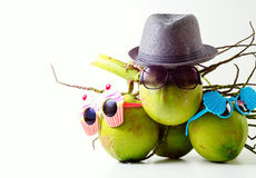 Family Summer and holiday symbolic concept.group of coconuts wit Royalty Free Stock Photos
