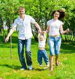 Family in the summer park. Family walking in the summer park royalty free stock image
