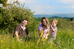 Family summer - playing on the meadow Stock Photography