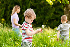 Family summer - playing on the meadow Royalty Free Stock Image