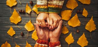 Family support. Autumn couple embrace hands top view,fall ash  l. Eaf,Autumnal mood,  relationship   concept Royalty Free Stock Photos